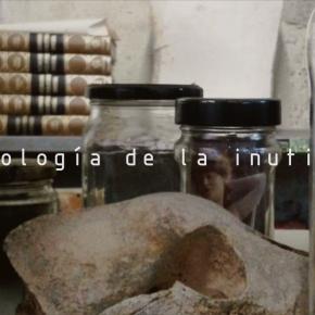 ARQUEOLOGÍA DE LA INUTILIDAD. Tim Maltorpe, Dr. Fausto Fox, Nogueira, Pepe Ternero y Boris Temprado · 10.05 –08.06