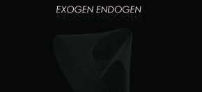 Exogen-Endogen · 06.03-11.04
